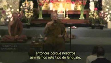 """Bhikkhu Sujato: """"Entendiendo la Meditación"""""""