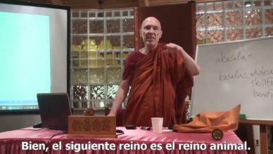 Kamma y Renacimiento – Venerable Bhikkhu Bodhi